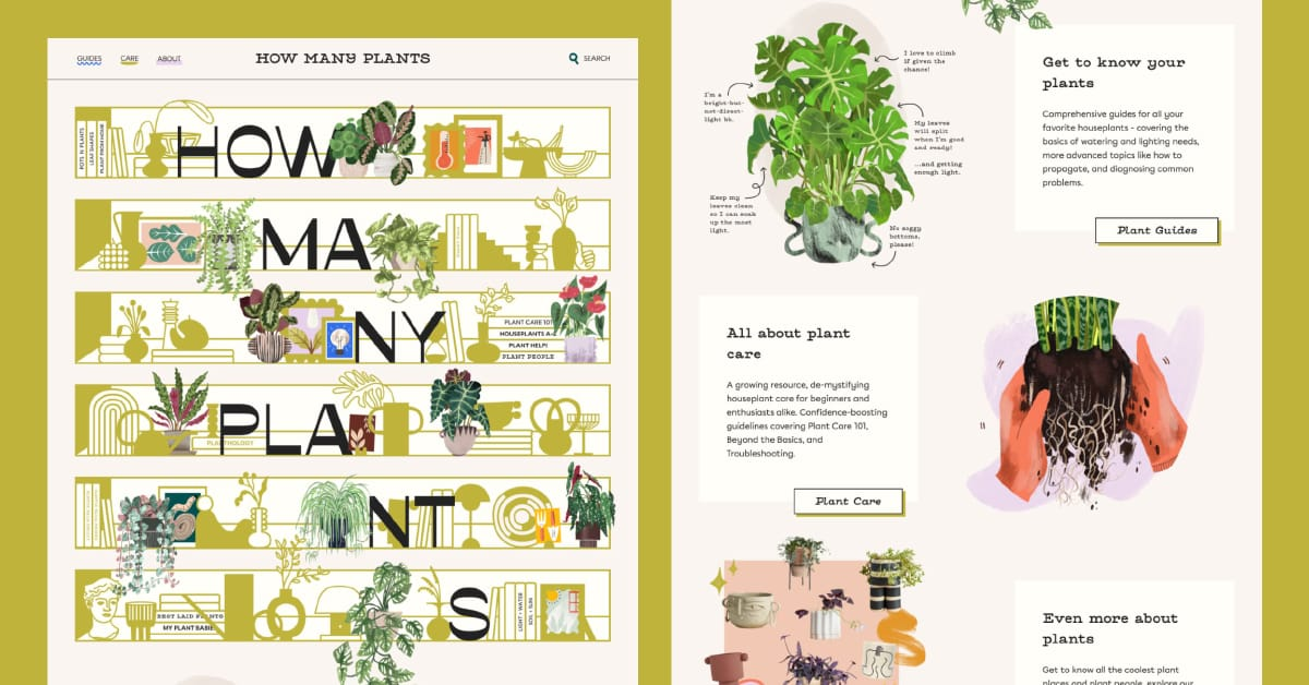 How Many Plants